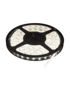 LED traka 60xLED dnevno svetlo LTR2835/60W-12
