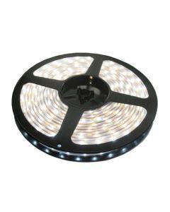 LED traka 120xLED hladno bela, LTR3528/120W-12S